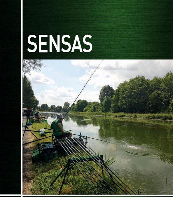 Catálogo Sensas 18