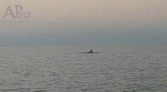 Kayak 29Sep19