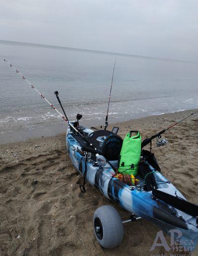 Kayak 16Feb20